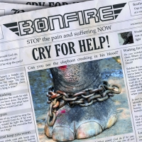 Bonfire - Cry For Help