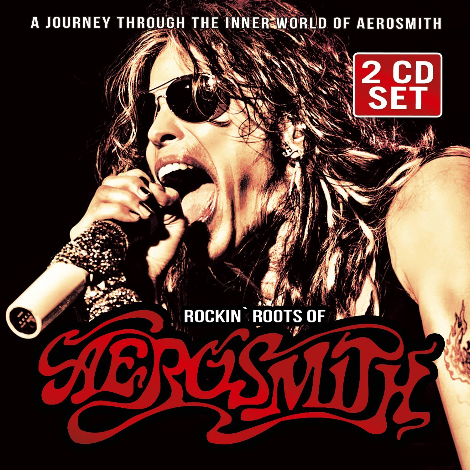 Rockin' Roots Of Aerosmith
