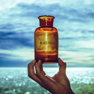 Blackfield - V, ltd.ed.