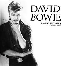 Bowie David - Loving The Alien (1983-1988) CD Box