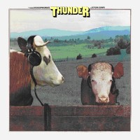 Thunder - Headphones For Cows