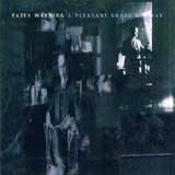 Fates Warning - Pleasant Shade Of Grey