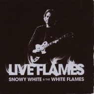White, Snowy - Live Flames