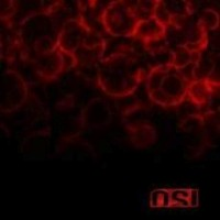 O.S.I - Blood, ltd.ed.
