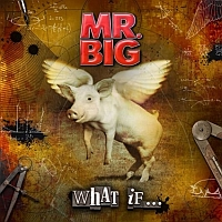 Mr. Big - What If ..., box set