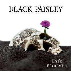 Black Paisley - Late Bloomer